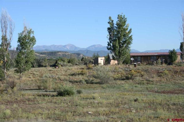 280 Aaron, Durango, CO 81303 (MLS #737525) :: Durango Mountain Realty