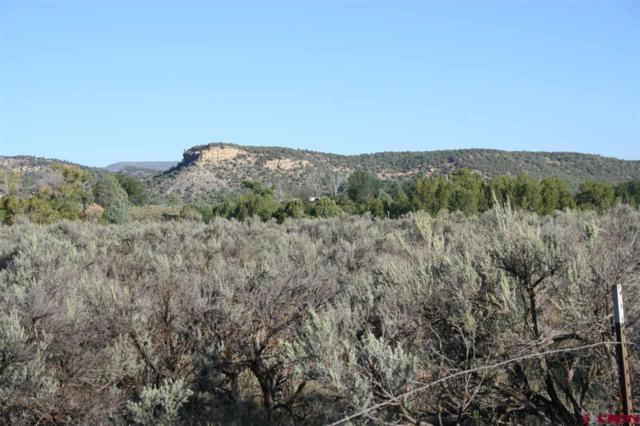 TBD S Hwy 550, Durango, CO 81303 (MLS #737547) :: Durango Mountain Realty