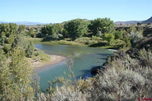 3905 S Hwy 550, Durango, CO 81303 (MLS #737630) :: Durango Mountain Realty