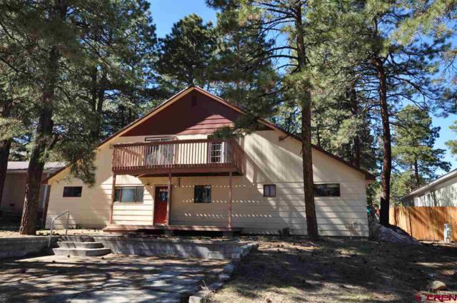 115 Canyon Creek Trail, Durango, CO 81303 (MLS #737860) :: Durango Home Sales