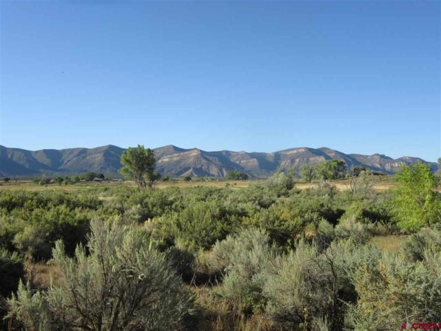 28230 Road H.6, Cortez, CO 81321 (MLS #738012) :: Durango Home Sales