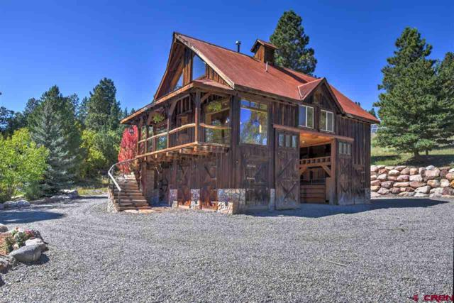 101 Laughing Dog Ln, Durango, CO 81301 (MLS #738168) :: Durango Mountain Realty