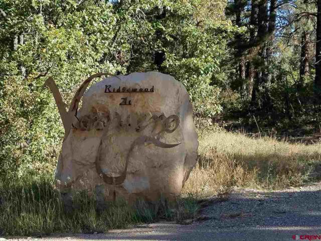 176 Vaquero Way, Durango, CO 81303 (MLS #738275) :: Durango Mountain Realty
