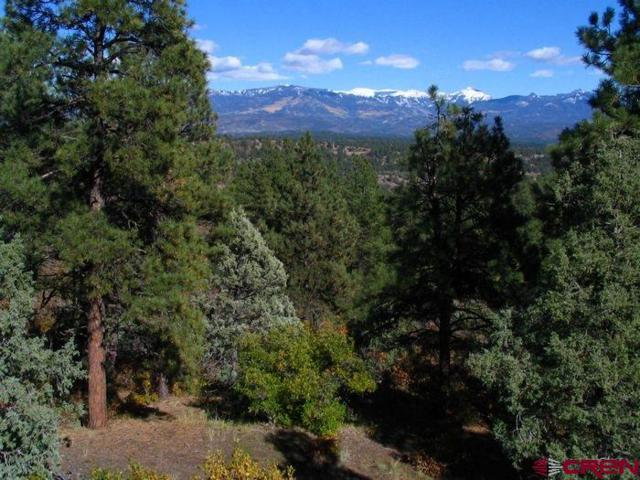 511 Cool Pines Drive, Pagosa Springs, CO 81147 (MLS #738319) :: Durango Home Sales