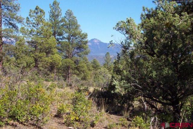 313 Cool Pines Drive, Pagosa Springs, CO 81147 (MLS #738434) :: Durango Home Sales