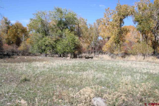 Lot 13 SE Stonebridge Drive, Cedaredge, CO 81413 (MLS #738608) :: The Dawn Howe Group | Keller Williams Colorado West Realty