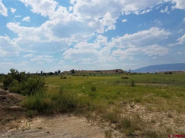 TBD F Road, Delta, CO 81416 (MLS #738610) :: CapRock Real Estate, LLC