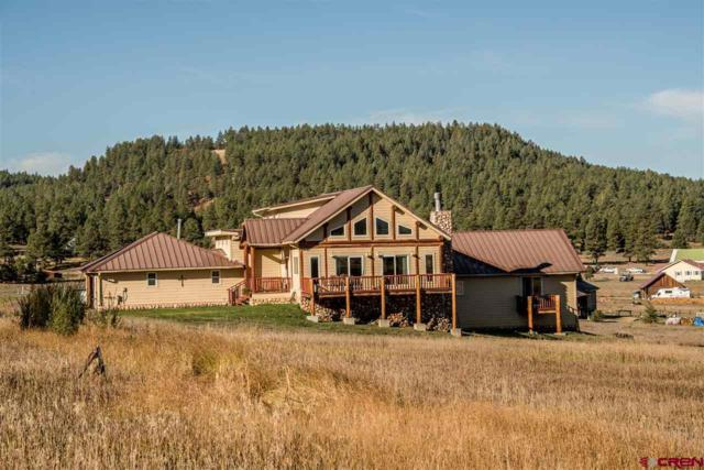 181 River Forest Drive, Pagosa Springs, CO 81147 (MLS #738625) :: Durango Home Sales