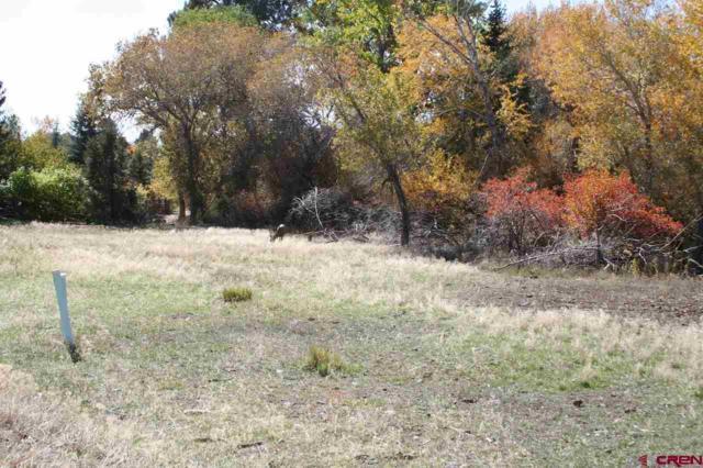 Lot 20 SE Stonebridge Drive, Cedaredge, CO 81413 (MLS #738655) :: Durango Home Sales