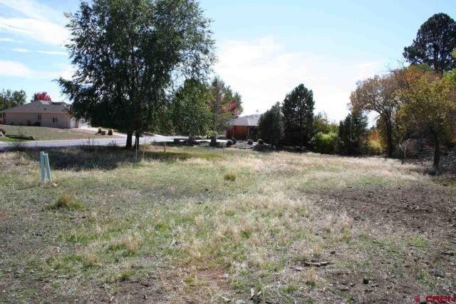Lot 21 SE Stonebridge Drive, Cedaredge, CO 81413 (MLS #738657) :: Durango Home Sales