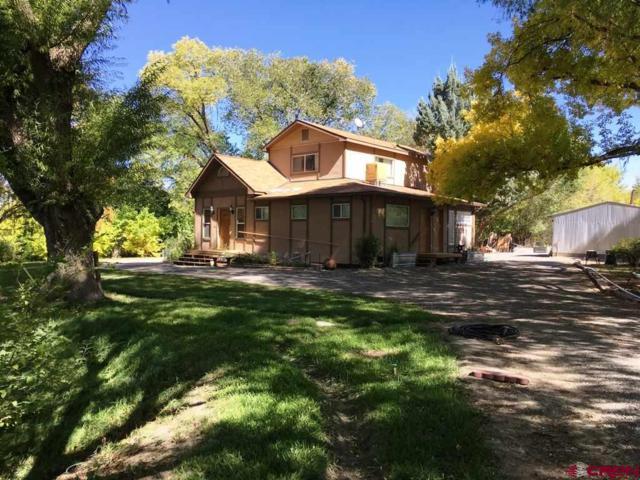 6790 1900 Road, Delta, CO 81416 (MLS #738661) :: CapRock Real Estate, LLC