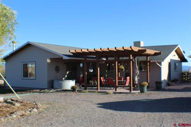 26494 Cedar Mesa Road, Cedaredge, CO 81413 (MLS #738688) :: CapRock Real Estate, LLC