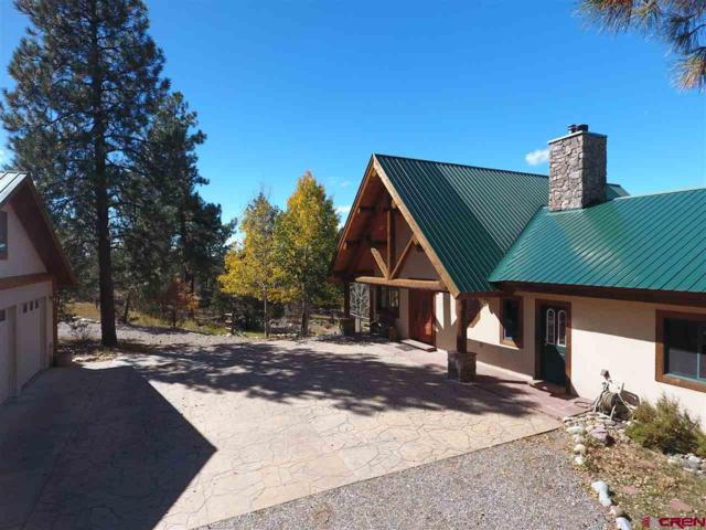 1268 D Bar K Drive, Durango, CO 81301 (MLS #738717) :: Durango Mountain Realty