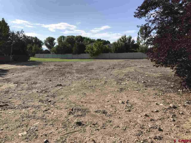 3739 Buffalo Lane, Montrose, CO 81403 (MLS #738718) :: CapRock Real Estate, LLC