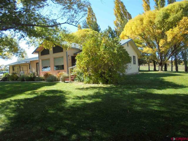 21241 Road N, Cortez, CO 81321 (MLS #738721) :: CapRock Real Estate, LLC