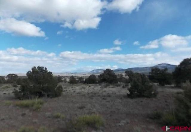 208 Frontier Way, South Fork, CO 81154 (MLS #738911) :: CapRock Real Estate, LLC