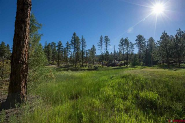 151 Old Stage Coach Pass (Lot #3), Durango, CO 81301 (MLS #738914) :: Durango Mountain Realty