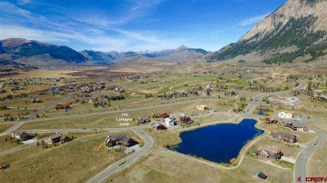 115 Larkspur Loop, Crested Butte, CO 81224 (MLS #738932) :: Durango Home Sales