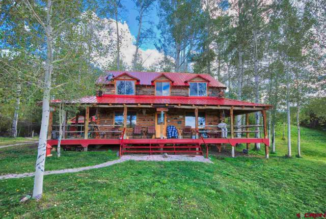 77165 Buckhorn Rd, Montrose, CO 81403 (MLS #739062) :: CapRock Real Estate, LLC