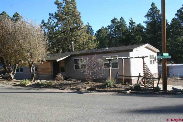317 Woodcrest Drive, Durango, CO 81303 (MLS #739105) :: CapRock Real Estate, LLC