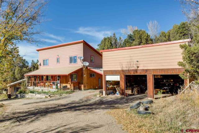 862 Rainbow Road, Durango, CO 81301 (MLS #739181) :: Durango Mountain Realty