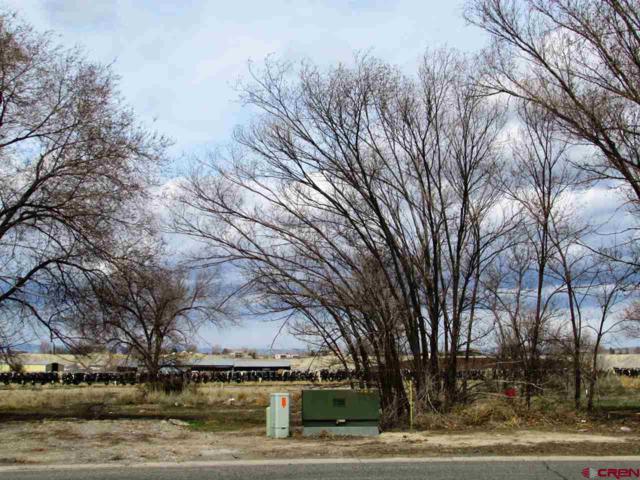 TBD Aerotech Place, Montrose, CO 81401 (MLS #739248) :: Durango Home Sales