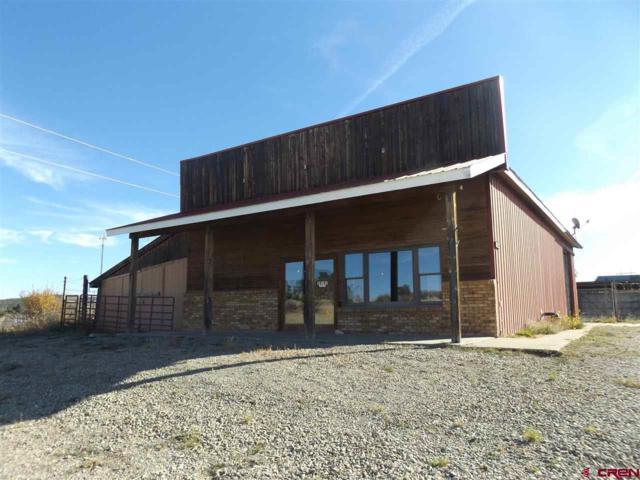 28101 Road T.5 Road, Dolores, CO 81323 (MLS #739339) :: CapRock Real Estate, LLC
