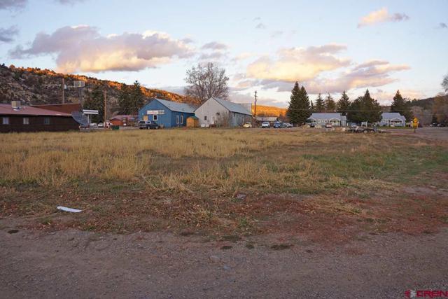 207 S 3rd St., Dolores, CO 81323 (MLS #739364) :: Durango Home Sales