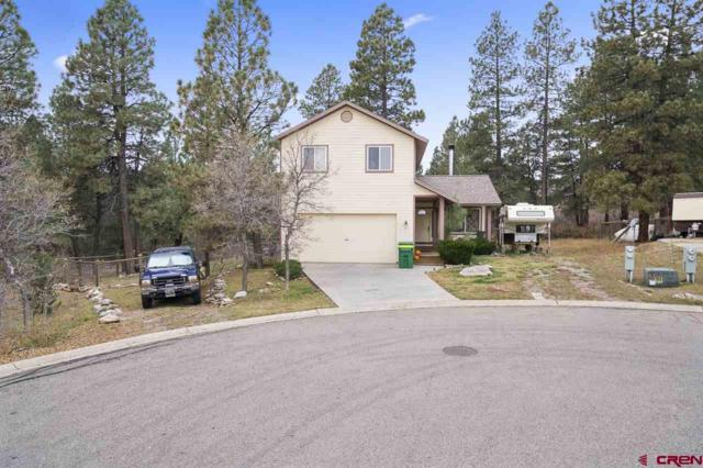 31 Locust Court, Durango, CO 81301 (MLS #739380) :: Durango Mountain Realty