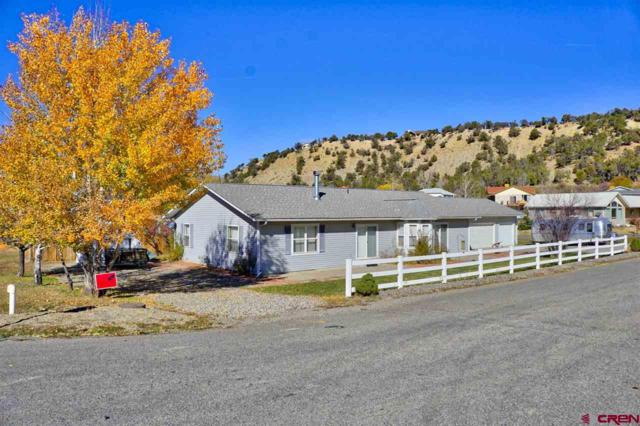 13571 Ragged Mountain Drive, Paonia, CO 81428 (MLS #739402) :: Durango Home Sales