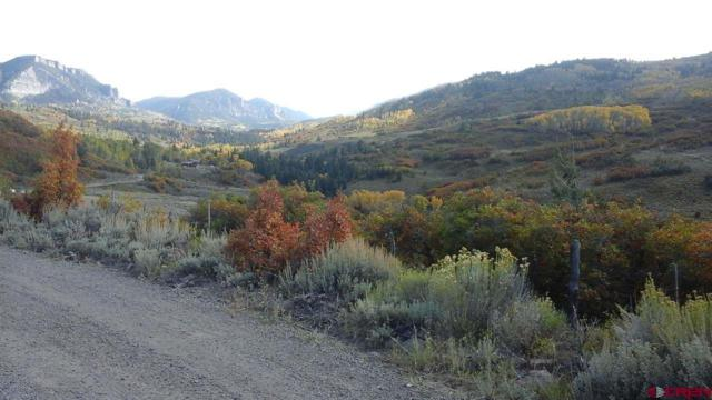 TBD Little Cimarron Road, Cimarron, CO 81220 (MLS #739502) :: Durango Home Sales