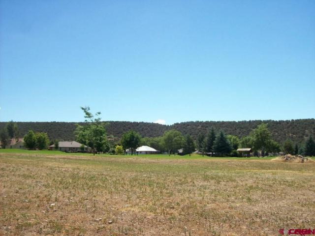 1425 SE Stonebridge Drive, Cedaredge, CO 81413 (MLS #739632) :: Durango Home Sales