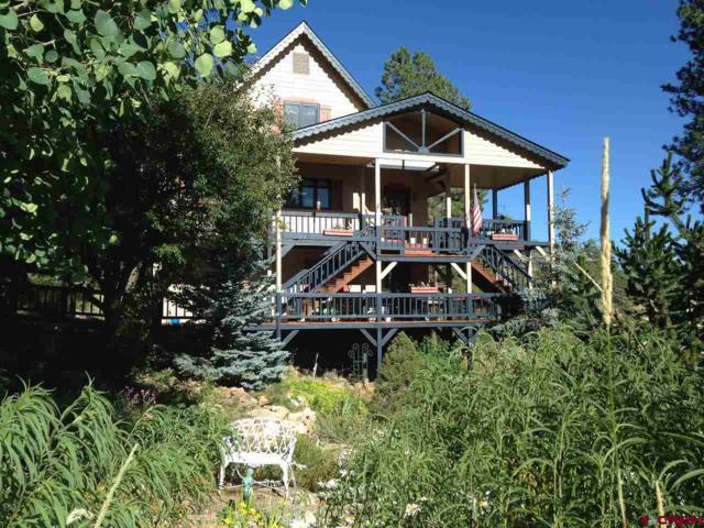 1120 Silver Mesa Driveway, Durango, CO 81301 (MLS #739637) :: Durango Mountain Realty