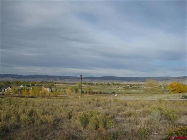 TBD Crestview Drive, Montrose, CO 81401 (MLS #739707) :: CapRock Real Estate, LLC