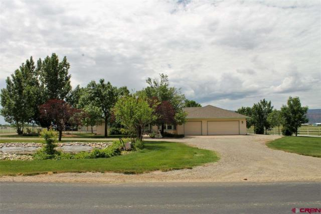1873 L Road, Fruita, CO 81521 (MLS #739741) :: CapRock Real Estate, LLC