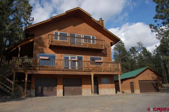 561 Sage Brush Trl, Durango, CO 81301 (MLS #739831) :: Durango Mountain Realty