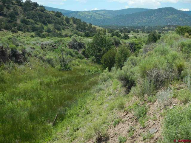 41793 Cr T 45, Saguache, CO 81149 (MLS #739834) :: Durango Home Sales