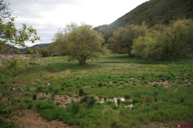 5478 Road 46, Mancos, CO 81328 (MLS #739836) :: Durango Home Sales