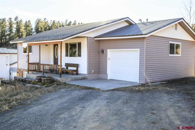 67 Terrace, Pagosa Springs, CO 81147 (MLS #739980) :: Durango Home Sales