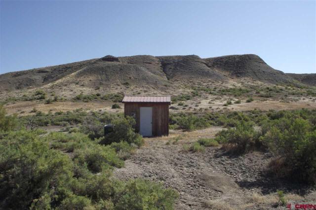TBD 3400 Road, Hotchkiss, CO 81419 (MLS #740009) :: CapRock Real Estate, LLC