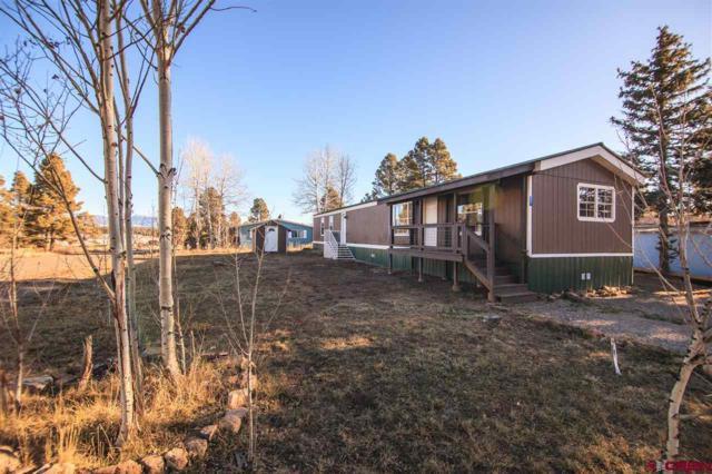 77 Canyon Circle, Pagosa Springs, CO 81147 (MLS #740030) :: Durango Home Sales