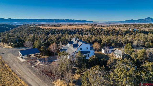 15600 Road 28.8, Dolores, CO 81323 (MLS #740041) :: Durango Home Sales