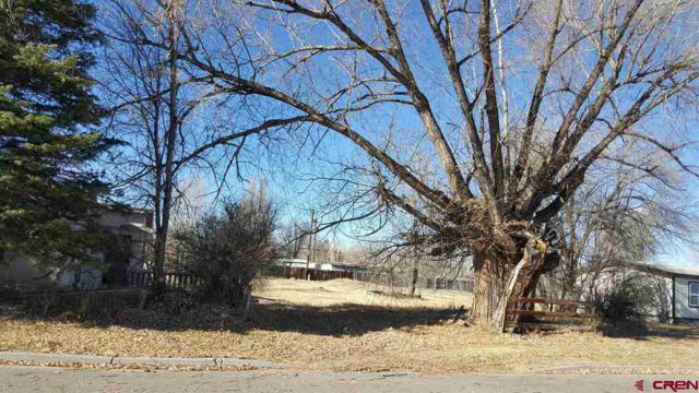 436 Tyndal Street, Monte Vista, CO 81144 (MLS #740057) :: CapRock Real Estate, LLC