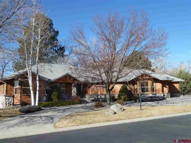 1360 SE Stonebridge Drive, Cedaredge, CO 81413 (MLS #740061) :: CapRock Real Estate, LLC