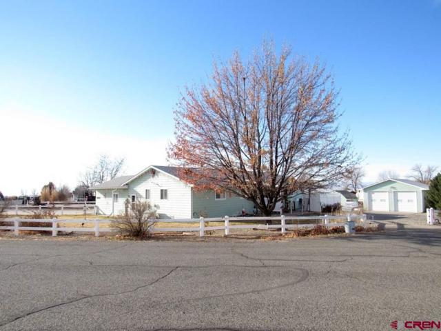 20637 Del Ray Drive, Eckert, CO 81418 (MLS #740075) :: CapRock Real Estate, LLC