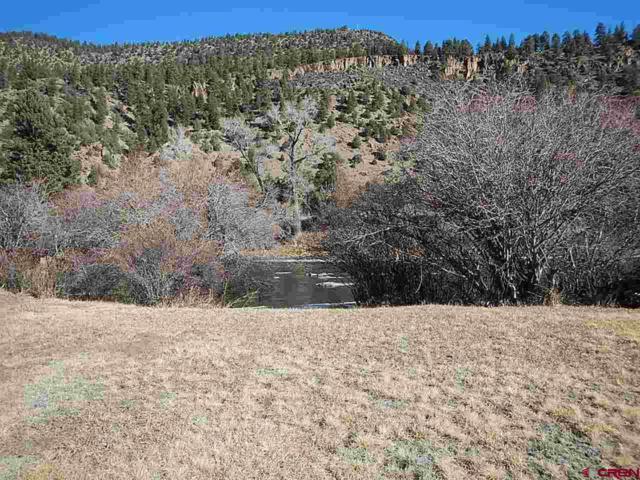 TBD Buck Ct., South Fork, CO 81154 (MLS #740078) :: Durango Home Sales