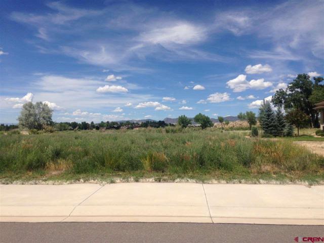 3435 Chestnut Drive, Montrose, CO 81401 (MLS #740095) :: CapRock Real Estate, LLC