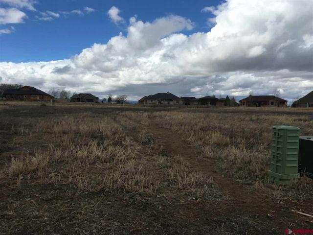 3418 Honey Locust Drive, Montrose, CO 81401 (MLS #740096) :: CapRock Real Estate, LLC