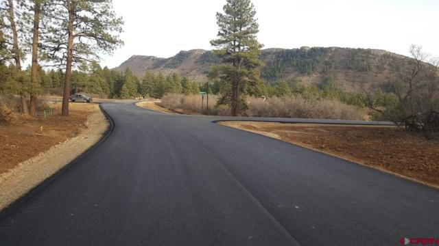 106 Farm Pond Lane, Durango, CO 81301 (MLS #740099) :: CapRock Real Estate, LLC