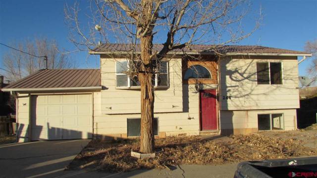 244 S Birch Avenue, Rangely, CO 81648 (MLS #740142) :: Keller Williams CO West / Mountain Coast Group